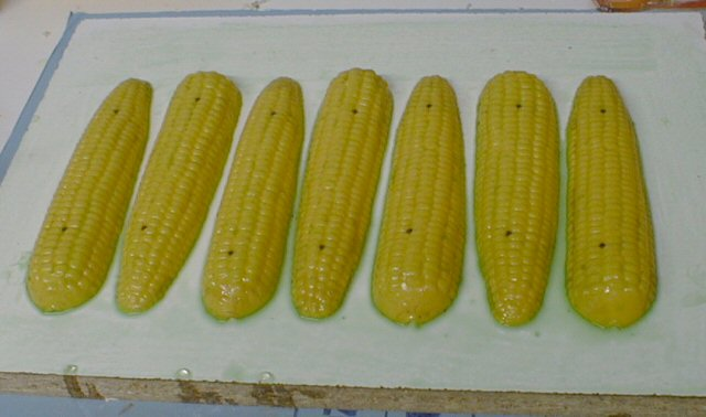00-Plastic_corn_halves_coated_with_release